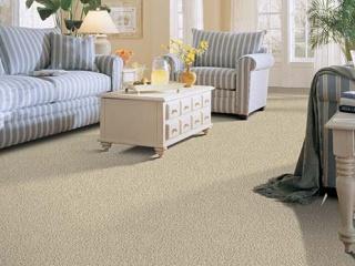 education-carpet-style-frieze